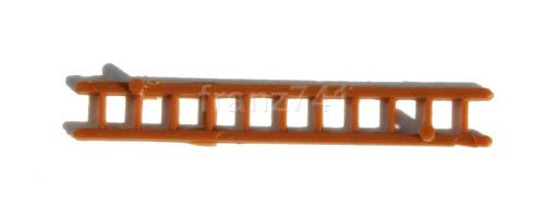 Zub-Allg-Arnold-xxxxx-Holzleiter